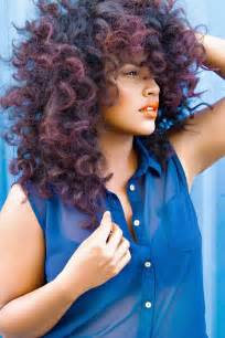 2015 natural hairstyles for african american women the style news
