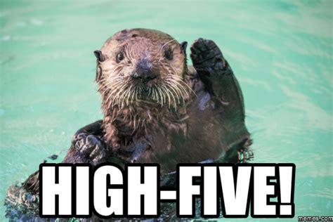 Funny Otter Meme - otter memes com