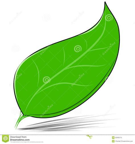 imagenes de hojas verdes solas hoja verde aislada en el ejemplo blanco del vector