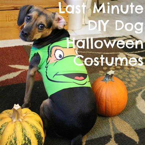 last minute diy halloween costumes from baby onesies