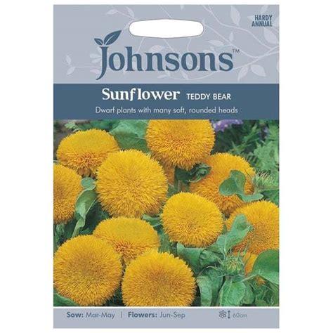 Benih Bibit Seeds Flower Lemon Sunflower Bunga Matahari Muda jual benih sunflower teddy 40 biji johnsons seeds