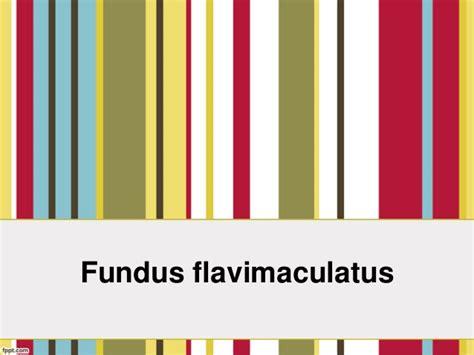 fundus changes fundus flavimaculatus
