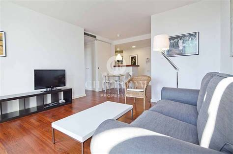 furnished one bedroom apartments furnished 1 bedroom apartment for rent in barceloneta