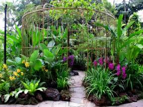 singapore orchid garden orchid birdcage fantasygarden