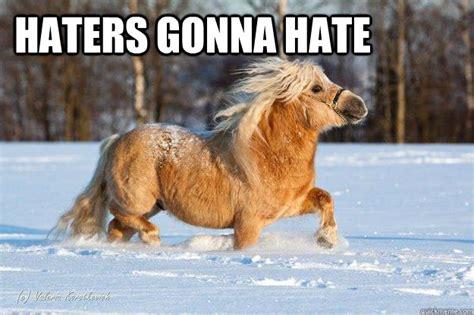 Hate Snow Meme - memes for haters gonna hate snow meme www memesbot com