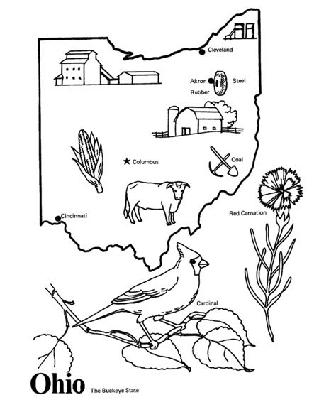 indiana state tree coloring page free michigan state bird coloring pages
