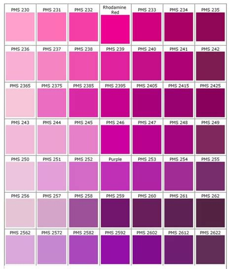 25 best ideas about magenta on pink peacock