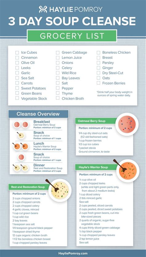 3 Day Vegetarian Detox Diet Plan best 25 soup cleanse ideas on weight loss