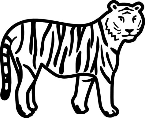 tiger standing looking and watching outline clip art at