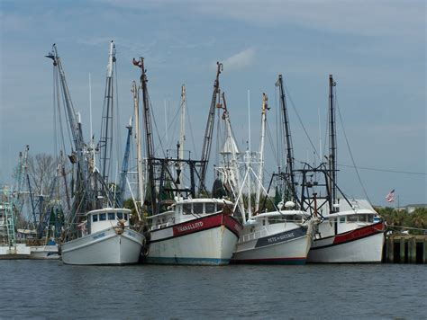 the shrimp boat the beauty that surrounds us georgia shrimp boats