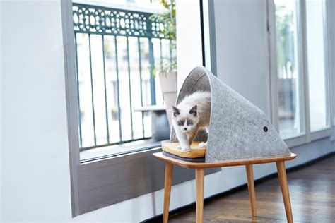 modern cat bed furniture stylish cat beds and cocoons for the discerning pet