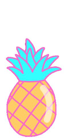 transparent tropical pineapple gif find  gifer