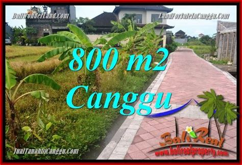 Jual Pomade Murah Di Bali jual murah tanah di canggu bali 8 are di canggu brawa