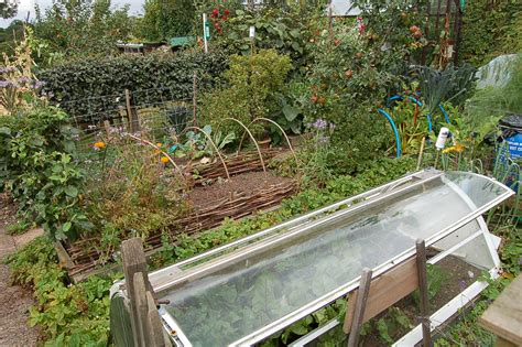 Permaculture Garden   greenbenchramblings