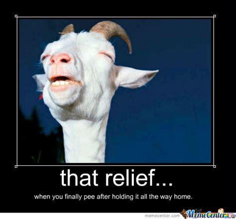 Relief Meme - that relief by lasnoches meme center
