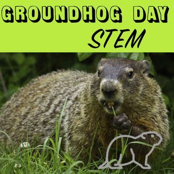 groundhog day espa ol 1000 ideas about weather conditions on
