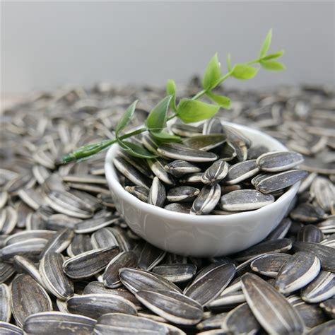 sunflower seeds for human bird seeds buy