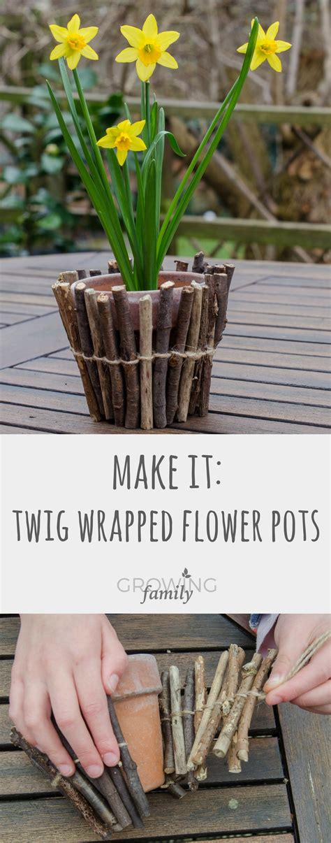 Homemade Plant Food For Cut Flowers by How To Make Twig Wrapped Flower Pots Growing Family