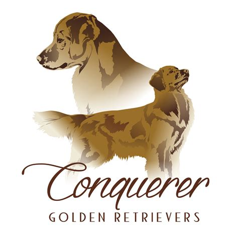 golden retriever logo home conquerer golden retrievers