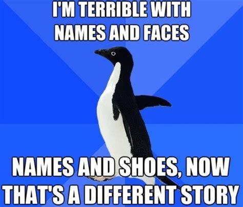 Different Meme - 39 best socially awkward penguin images on pinterest