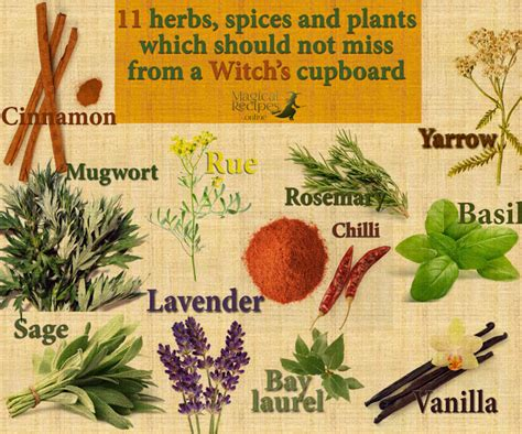 magical recipies online which 11 herbs spices and