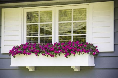 window flower box design 15 inspiring window flower boxes for wishing you morning