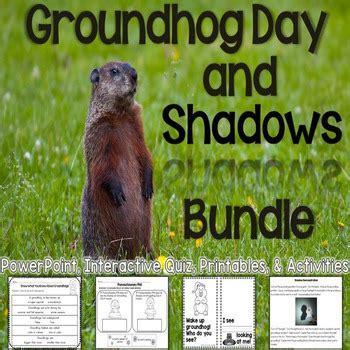 groundhog day questions groundhog day questions 28 images groundhog books