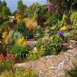 faire un beau jardin m 233 diterran 233 en web libre