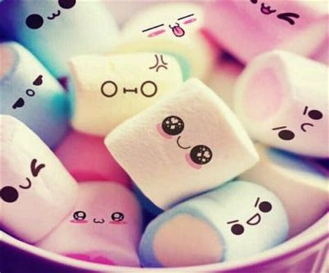 marshmallow sayings marshmallow quotes