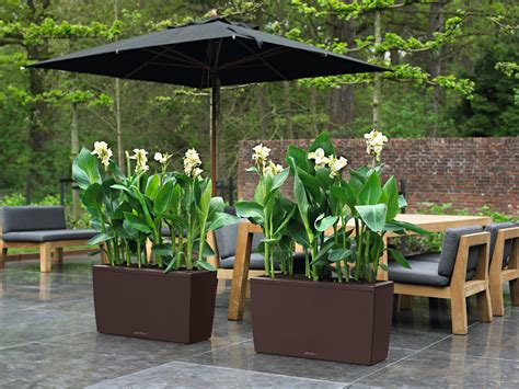 lechuza cararo  watering planter metropolitan