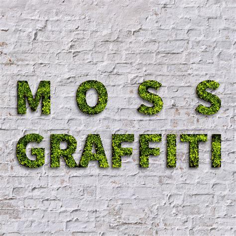 moos graffiti moss graffiti