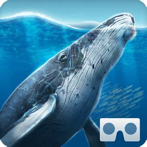by the sea mymovies sea world vr2 android apps on google play