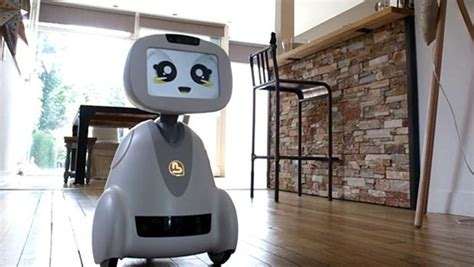 Buddy is a home robot that will entertain your kids