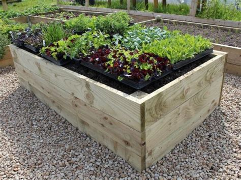 Raised Vegetable Garden Kit by Best 25 Raised Bed Kits Ideas On Raised
