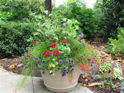 Potted Gardens Ideas Bwisegardening Day 365 Of 365 Days Of Container Gardening