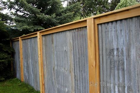 backyard metal fence garden of eatin corrugated metal privacy fence this