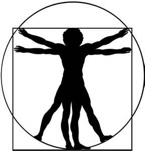 vitruvian man silhouette free vector silhouettes