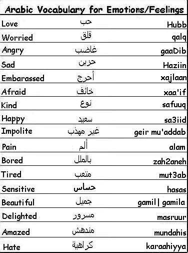 learn curse words and vulgar expressions books arabic vocabulary words for emotions and feelings learn