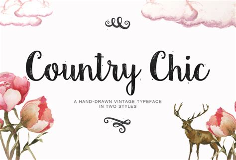 country style fonts country chic script script fonts on creative market