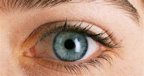 imagenes de ojos zoom top 8 interesting facts about the human eye read health