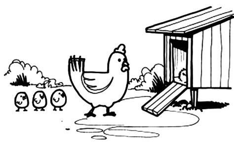 coloring page chicken coop chicken co op coloring pages coloring pages
