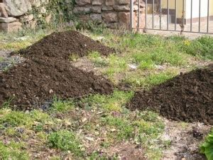 come fare il compost in giardino compost guida pratica al compostaggio domestico