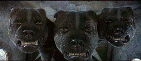 harry potter dog supranatural harry potter s magical creatures three