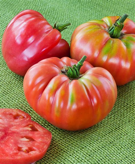 german queen heirloom tomato beefsteak type low acidity