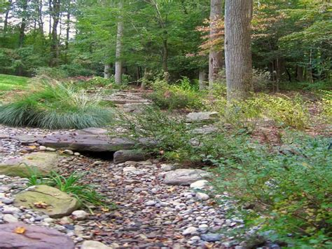 Landscape Swale Definition How To Repairs Landscaping Swale Drainage Swale