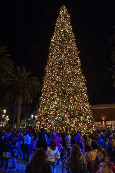 Best 28 Fashion Island Christmas Tree Lighting Images Island Tree Lighting