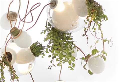 Chandelier Plant Omer Arbel S Gorgeous Chandelier Glows Green With Hanging Succulents Omer Arbel Plant Chandelier