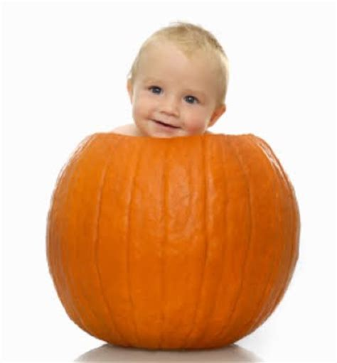 baby pumpkin 15 babies sitting in pumpkins now that s nifty