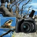 Kamera Olympus Sp 570 Uz fokussiert all inclusive bei schirn frankfurt