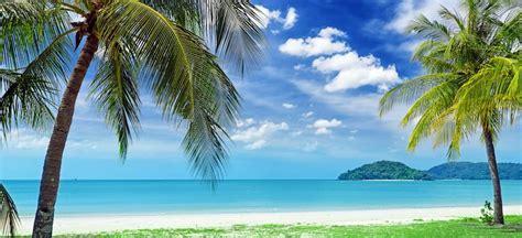 beaches  plant city fl stingray chevrolet